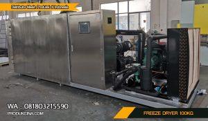 Mesin Pengeringan Beku Freeze Dryer 100Kg Murah